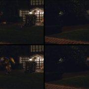 Rodeo FX- Bumblebee
