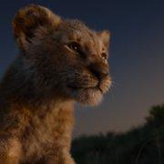 Der König der Löwen -Szenenbild