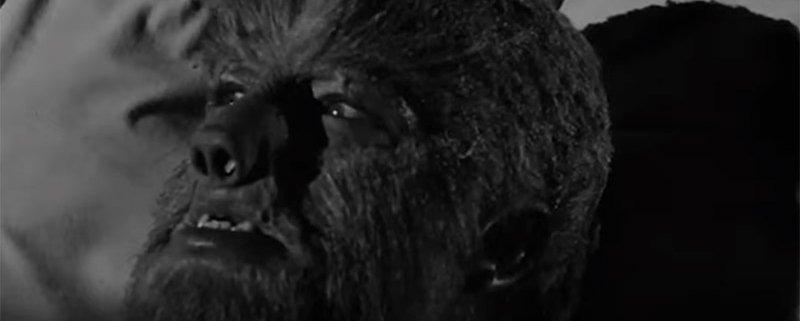 Werwolf Verwandlungen